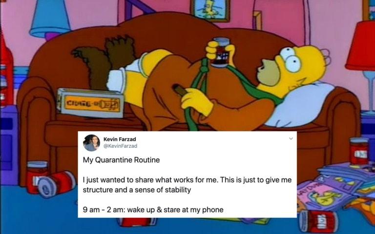 Homer Simpson quarantine