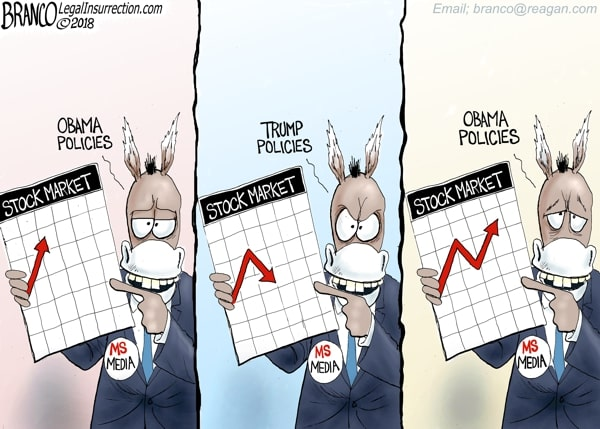 Stock Market Election Polls Comic